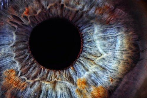 salud-ojos-500x334