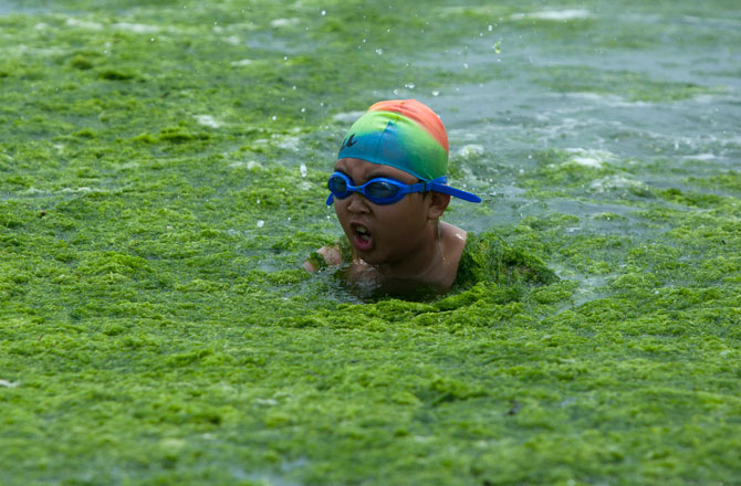 Qingdao-Algae-Beach-China-Holiday-Kid-Swimmer